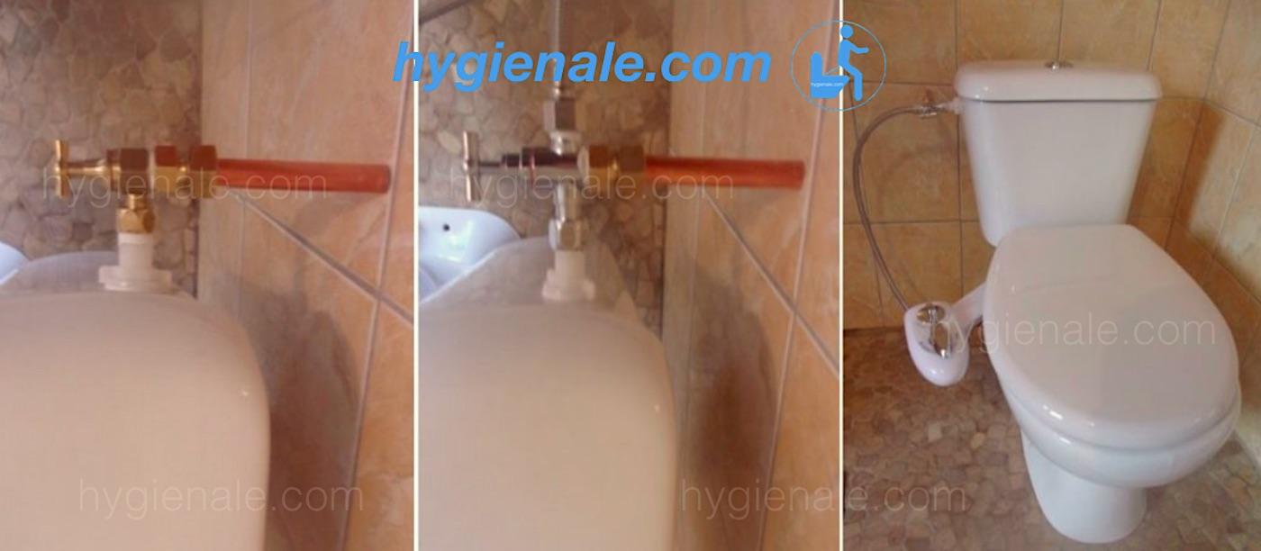 Le réservoir de toilette avec connexion d'eau murale