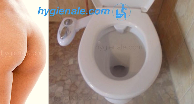 Le wc japonais permet de se passer de papier toilette pour se nettoyer les fesses !