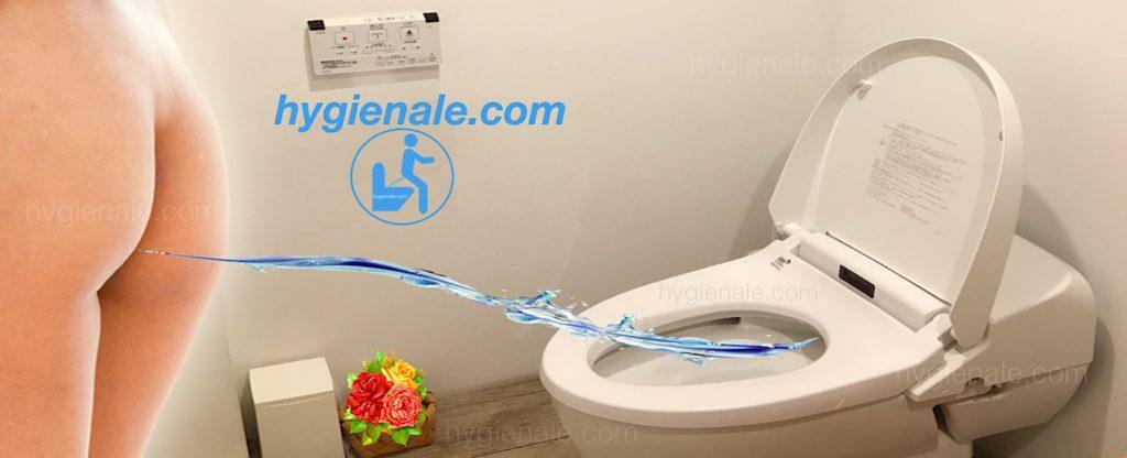 La toilette jet d'eau japonaise dispose d'une douchette lavante.